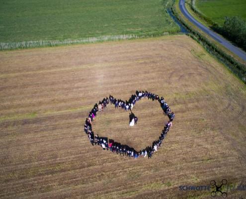 Herz 2